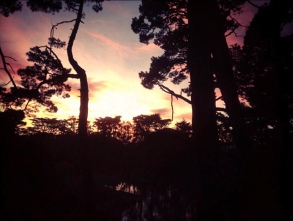 Sunset View from Strawberry Hill