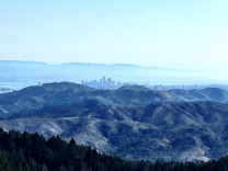 View from Mount Tam