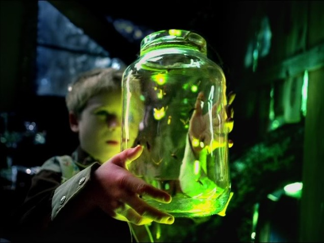 firefly-light-2
